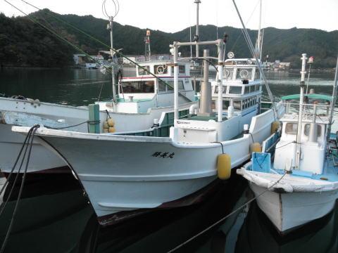 三重県紀伊長島 ティップラン 勝美丸